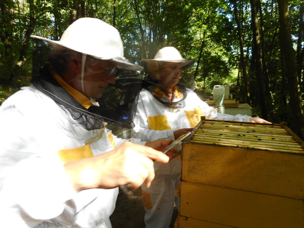 Pavel and Lenka open a hive of our Apis mellifera carnica bees.